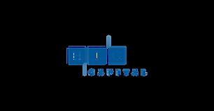 HIG_Capital_RGB_logo-removebg-preview.pn