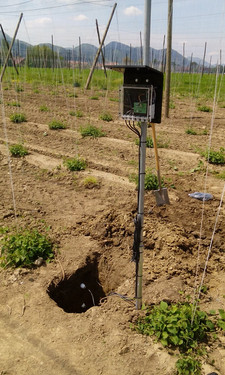IoT sensor system as support for irrigation.