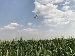 """Nova Mutum vive """"boom"""" da agricultura digital"""