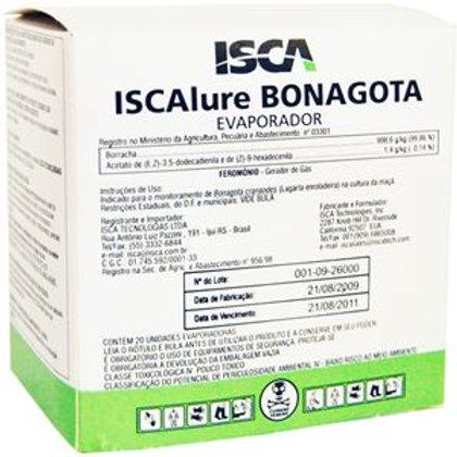 ISCALURE BONAGOTA 20UN