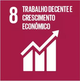 8 Objetivo ONU.png