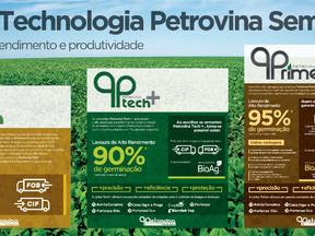 Sementes Petrovina fará lançamento no  Norte AgroShow Sinop-MT