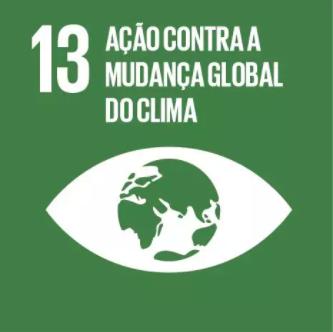 13 Objetivo ONU.png