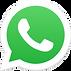 WhatsApp Logo PNG.png