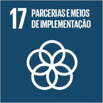 17 Objetivo ONU.png