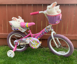 Bunnies going for a bike ride? Why not?