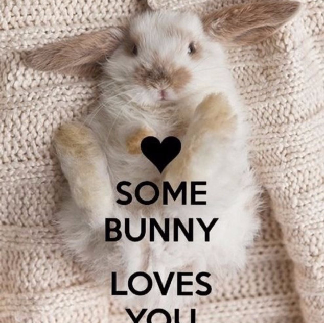 Bunnies Are Welcomed Here!