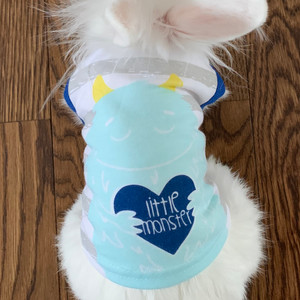 Bunnies can dress up too!