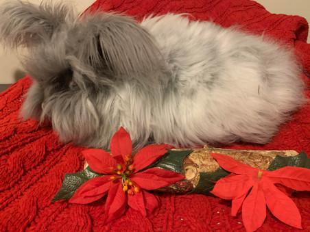 Fluffy & Warm Bunny Slippers?