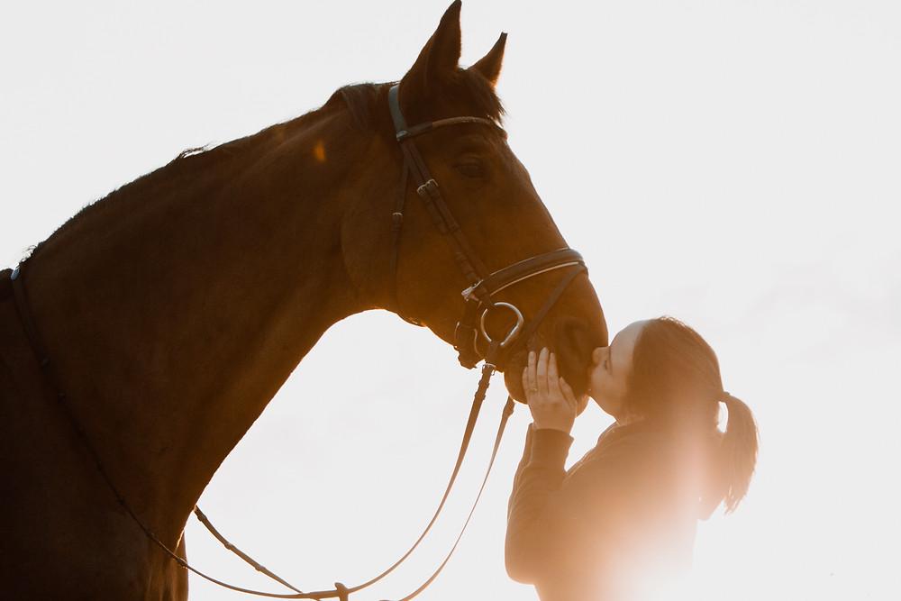 Katharina und Delight im Sonnenuntergang. Sie drückt dem Wallach einen Kuss auf die Nase.