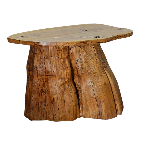 Console made from Reclaimed Tree Trunk