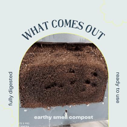 Compost Harvest