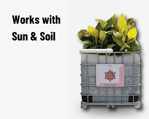 Sewage Treatment Plant, recycle wastewater using energies of Sun & Soil.