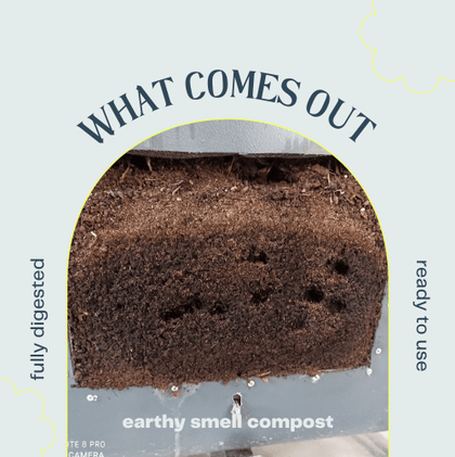 Quality of harvested compost