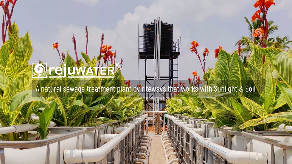STP plant for wastewater management