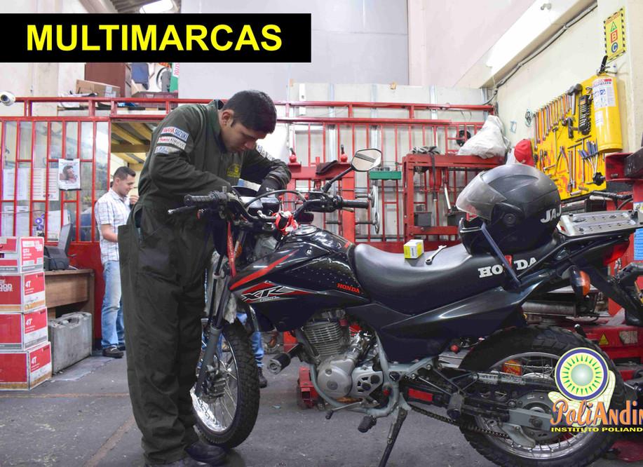 Multimarcas.jpg