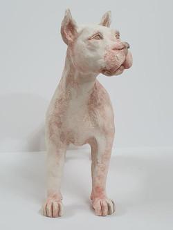 Doggo (9)