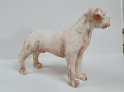 Doggo (1)