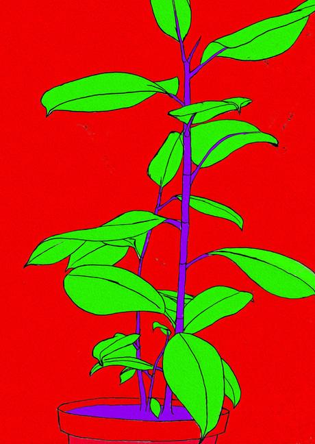 Techniplant