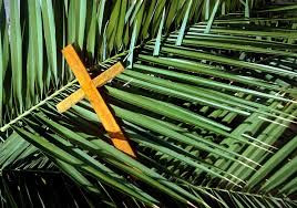 Palm Sunday: Where are the Palms? (Sunday, April 5th)