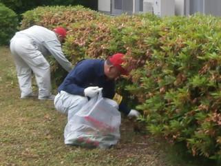 苅田清掃ボランティアに参加致しました。