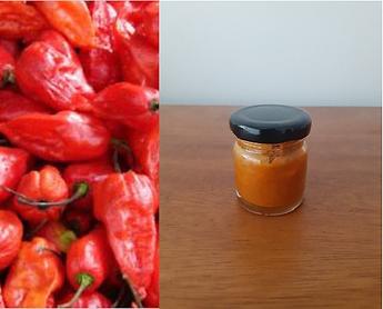 naga king chili.png