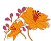 Copy of krane-logo-2.png