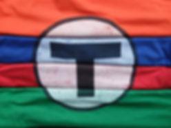 MBTA Logo Tees