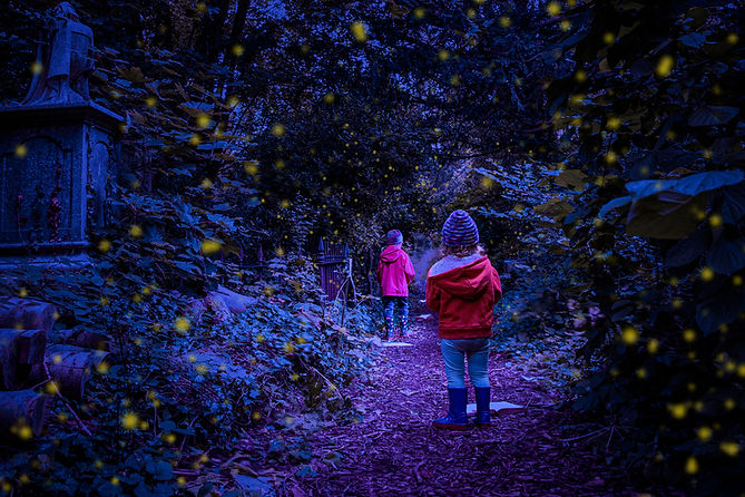 Firefly H&G Main Landscape.jpg
