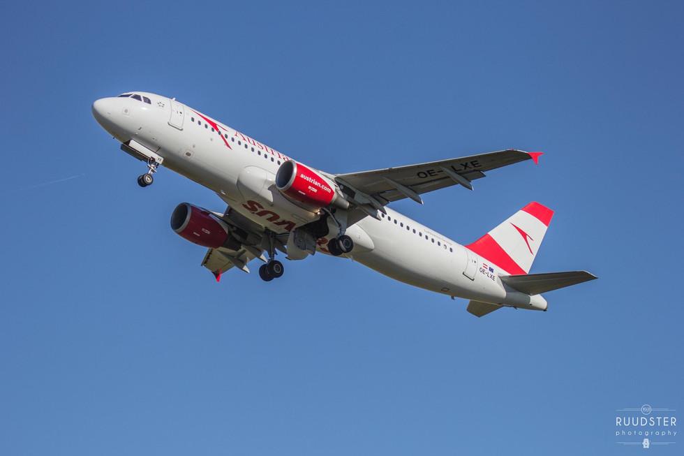 OE-LXE | Build: 2008 - Airbus 320-216