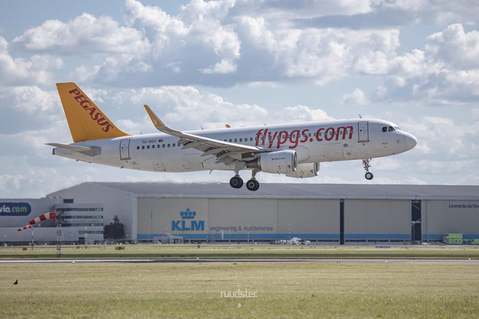 TC-DCC | Build: 2014 - Airbus A320-214