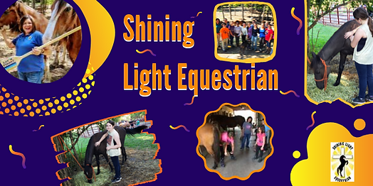 shining light equestrian fun.png