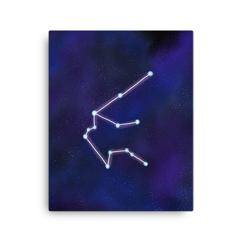 Aquarius Constellation Canvas