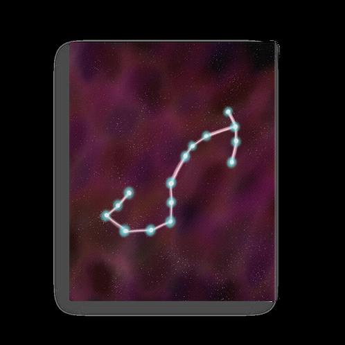 Scorpio Constellation Canvas