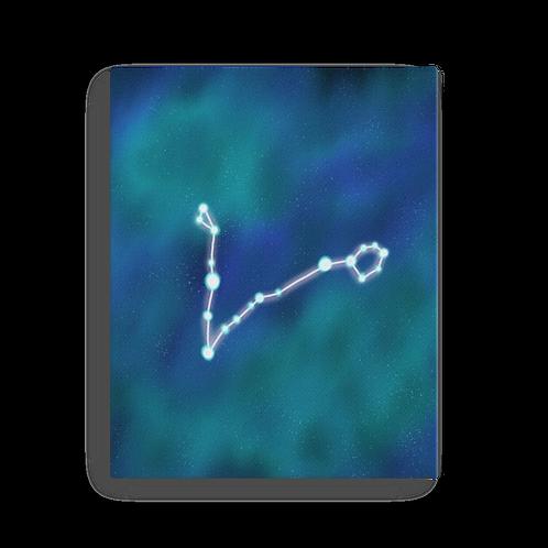 Pisces Constellation Canvas