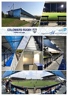 Colomiers - loges rugby