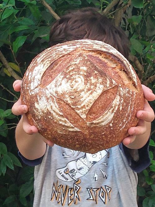 Pão de longa fermentação natural - redondo ou oval  - 550g