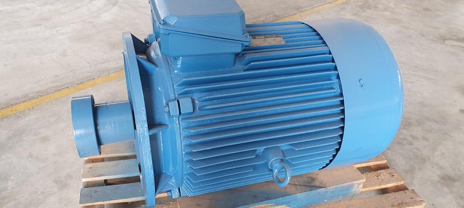 motore trifase KSB