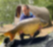 7-7 Andrew Hodgson 31lb 4oz Majestic poo
