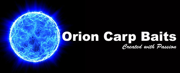 orion rigel logo 6 white.jpg