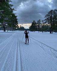 Cross Country Skier.jpg