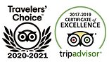 TripAdvisor All Awards (2021).png