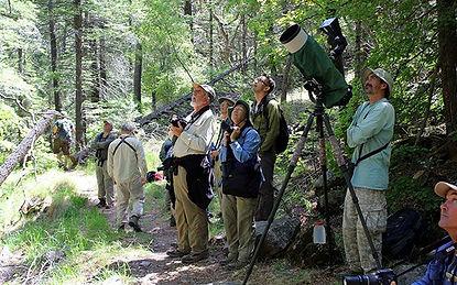 Ramsey Canyon Birders.jpg