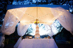 Weddings and Receptions -2