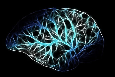 Neuron pathways in the brain can be reprogrammed