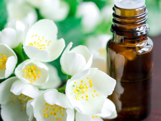 Jasmine Flower Essential Oil