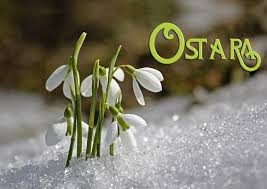 Ritual to Welcome Ostara (Spring) on the Equinox