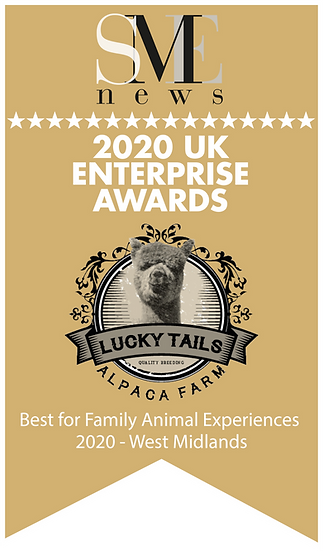 Aug20279-UK Enterprise Awards 2020 Winne