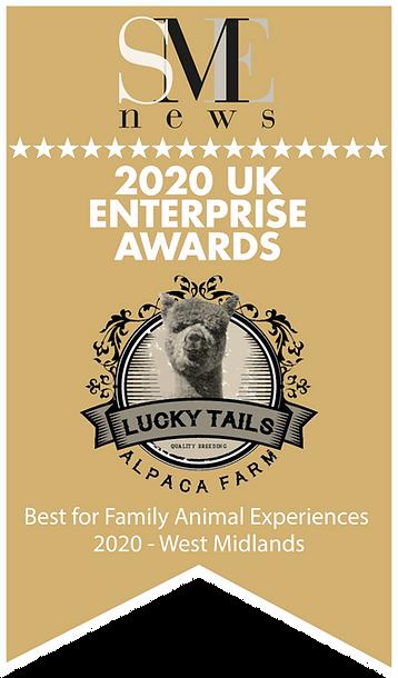 Aug20279-UK Enterprise Awards 2020 Winne