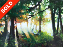 First Light Sold